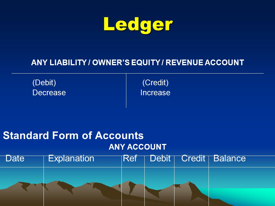 ANY LIABILITY / OWNER'S EQUITY / REVENUE ACCOUNT