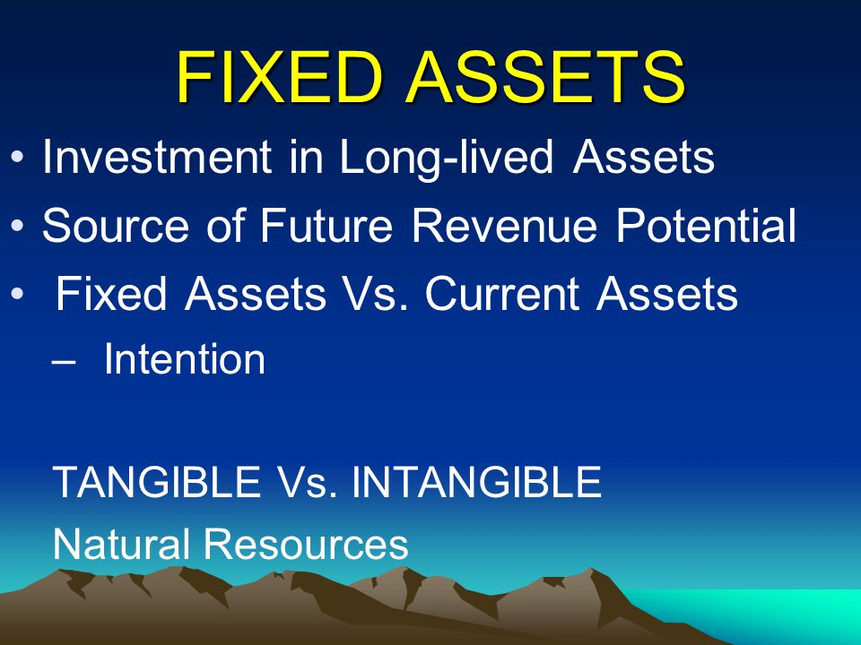 FIXED ASSETS Investment in Long-lived Assets