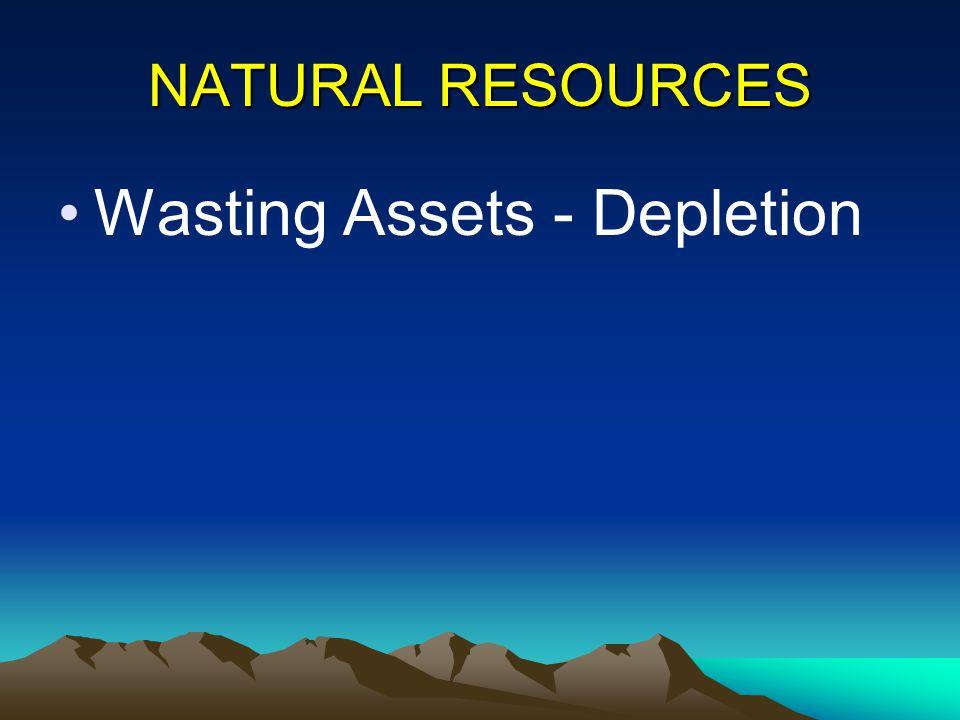 Wasting Assets - Depletion