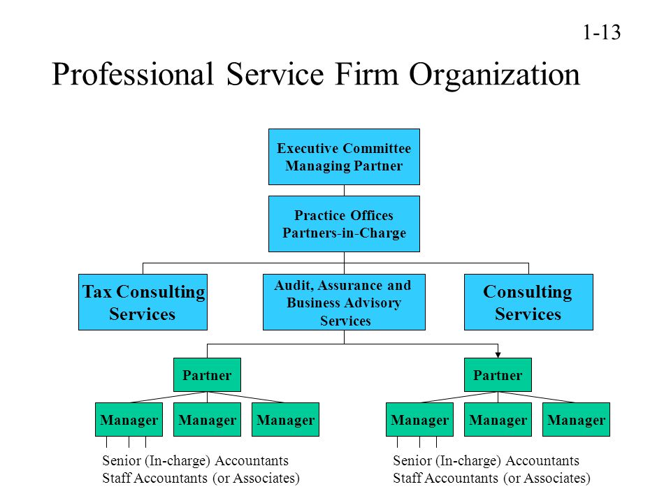 Professional Service Firm Organization