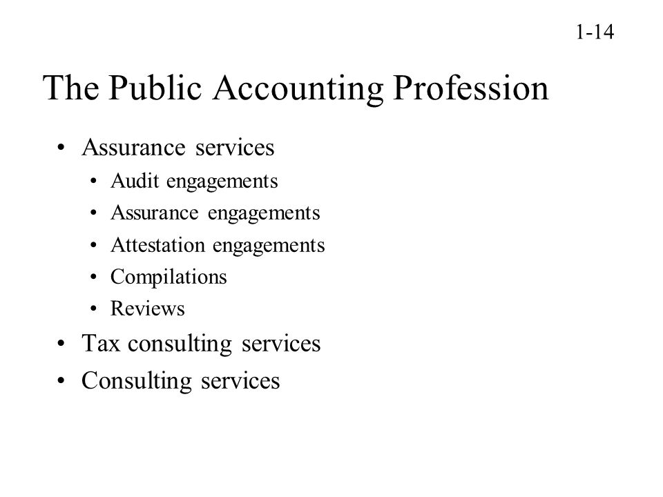 The Public Accounting Profession