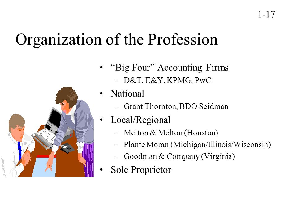 Organization of the Profession