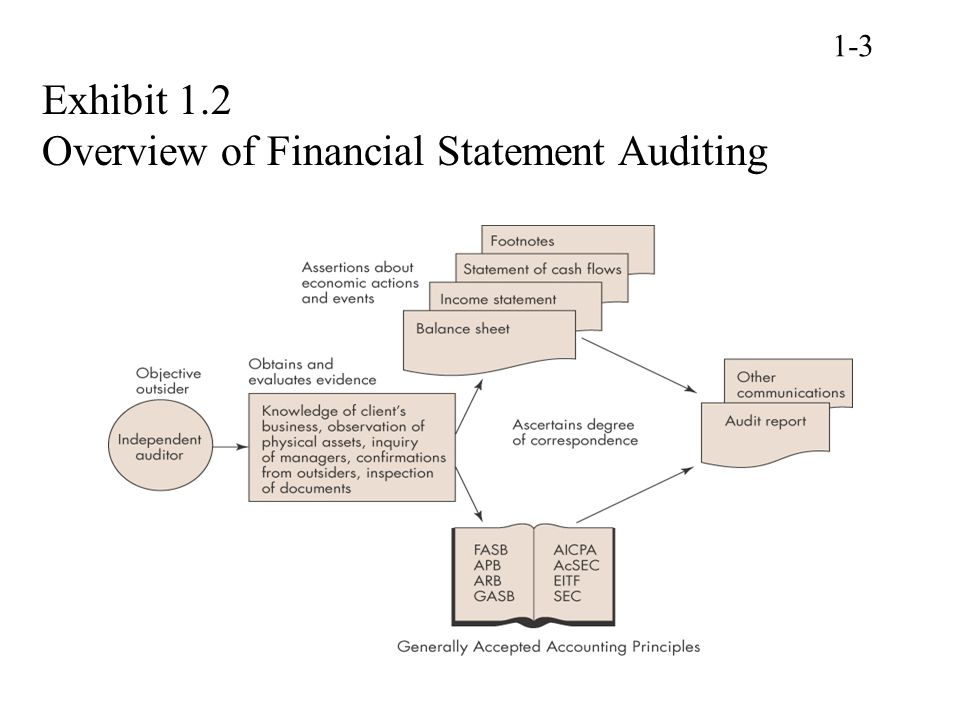 Exhibit 1.2 Overview of Financial Statement Auditing