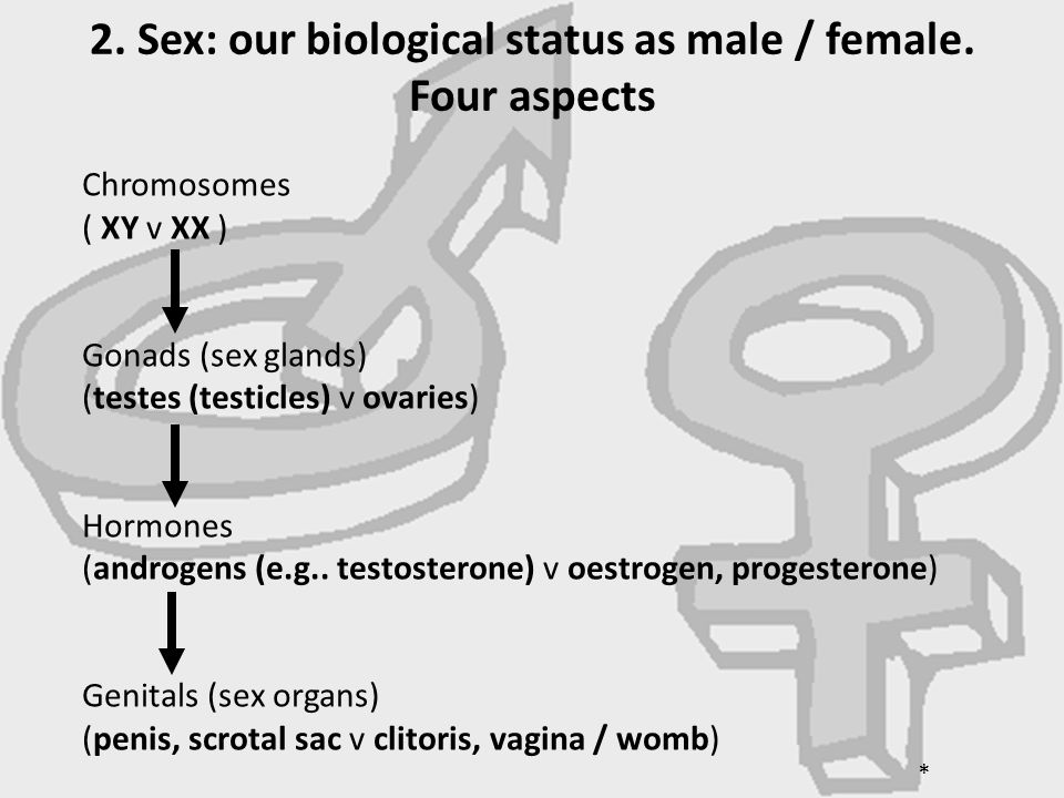 2. Sex: our biological status as male / female. Four aspects