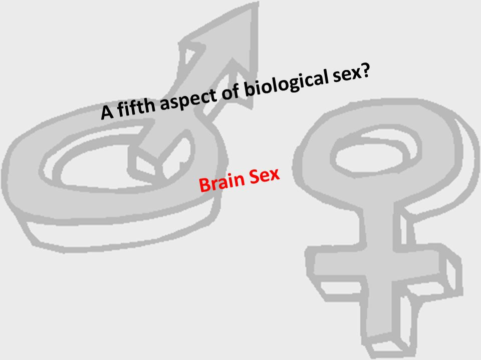 A fifth aspect of biological sex