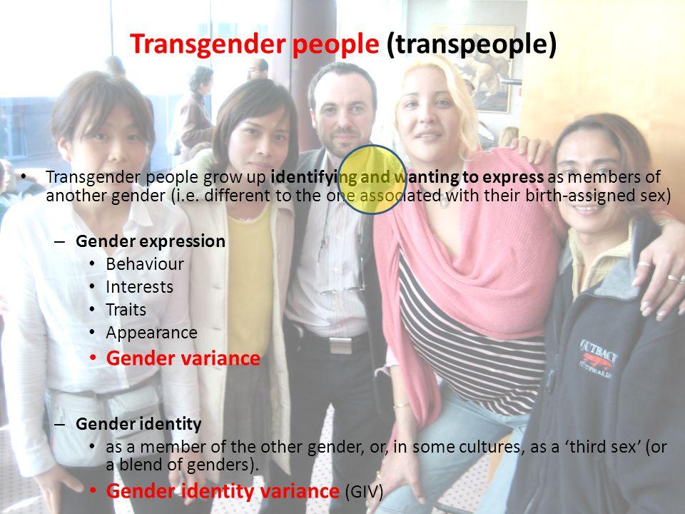 Transgender people (transpeople)