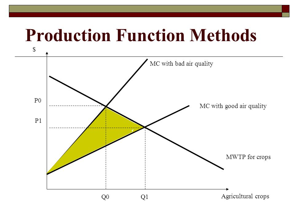 Production Function Methods