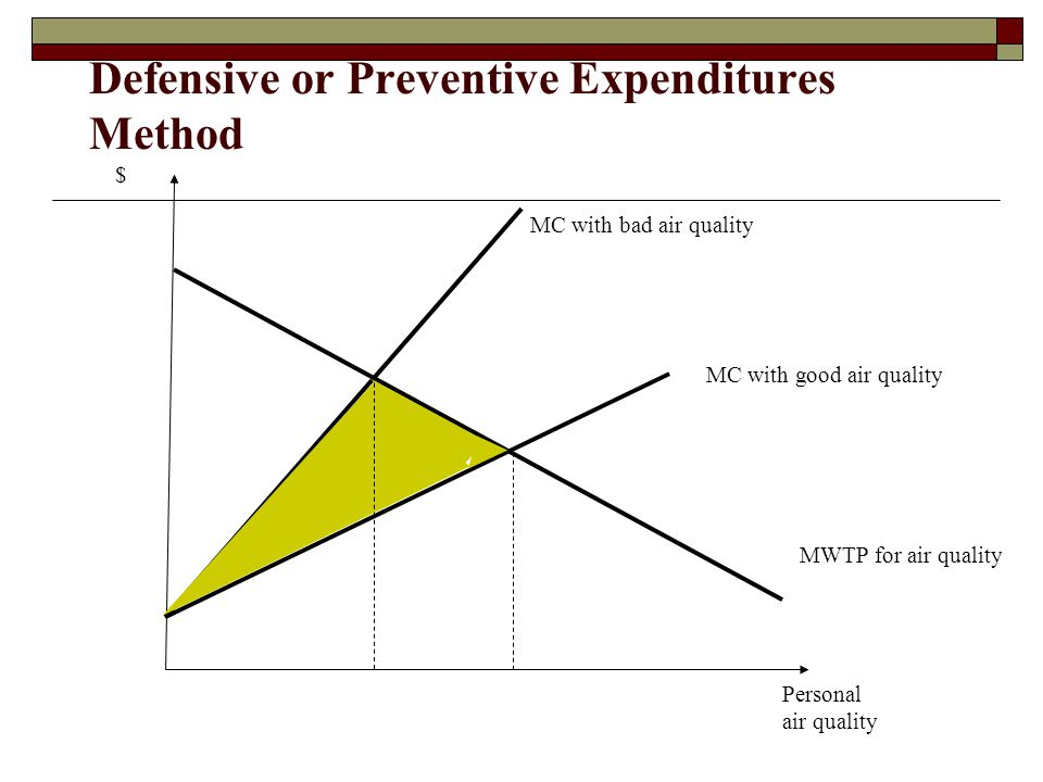 Defensive or Preventive Expenditures Method
