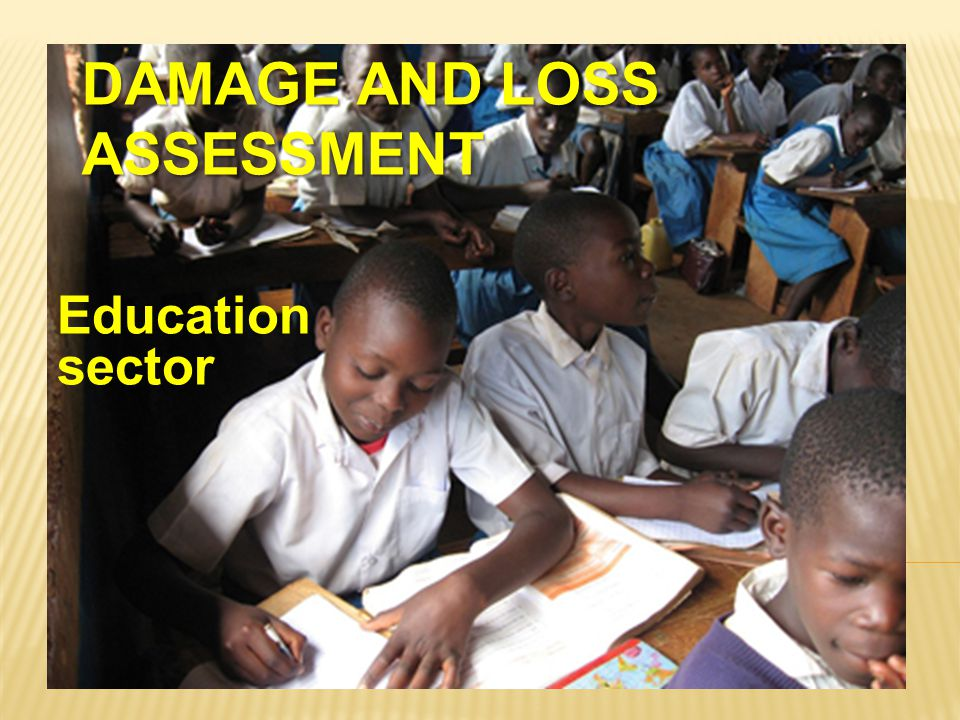 Damage and Loss Assessment