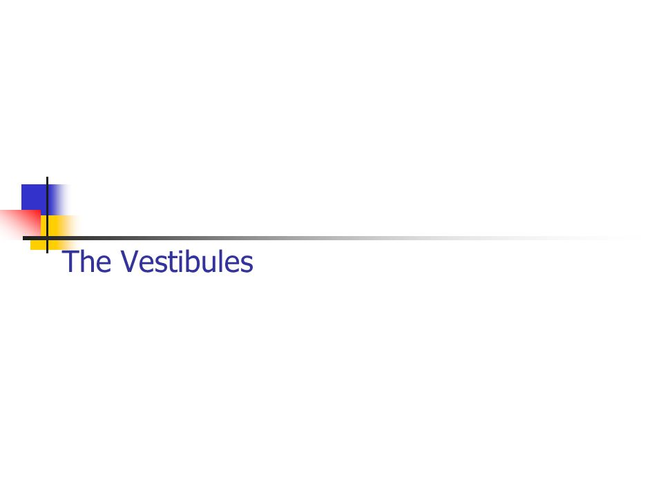 The Vestibules