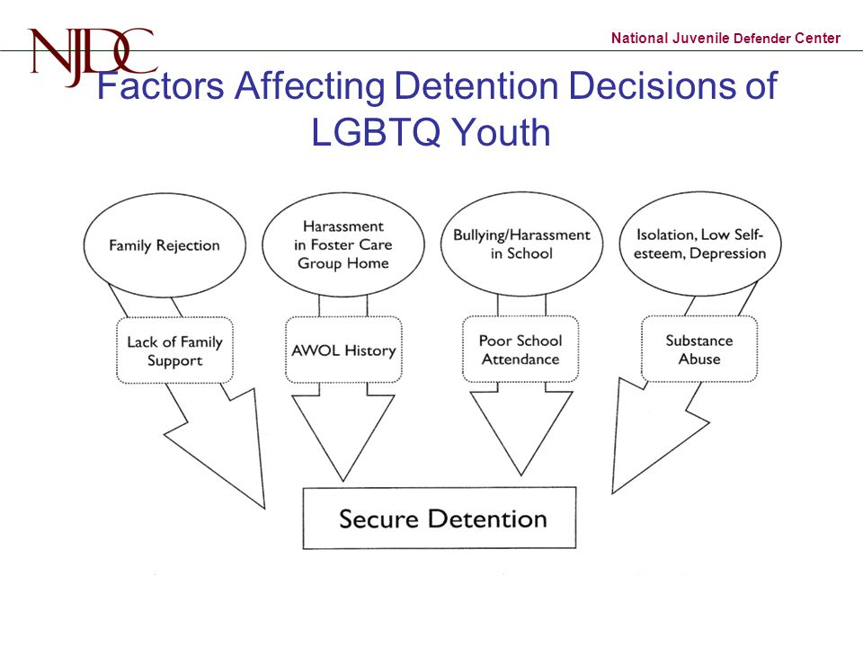 Factors Affecting Detention Decisions of LGBTQ Youth