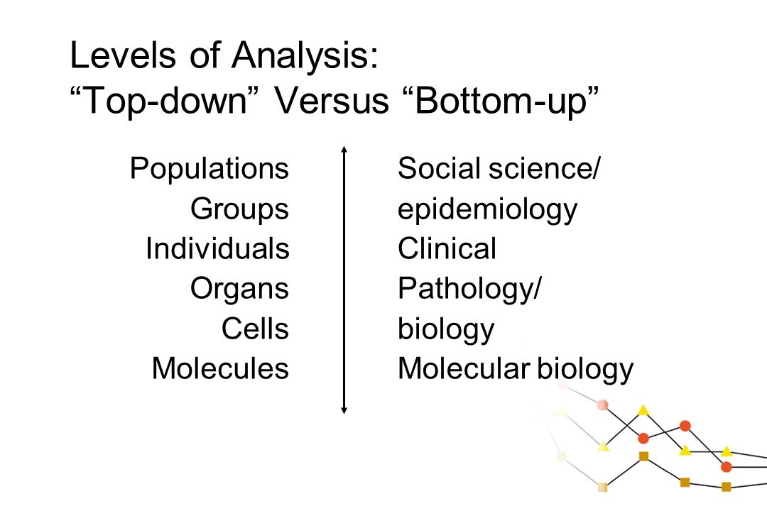 Levels of Analysis: Top-down Versus Bottom-up