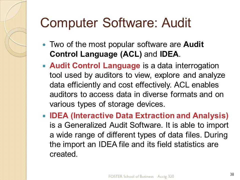 Computer Software: Audit