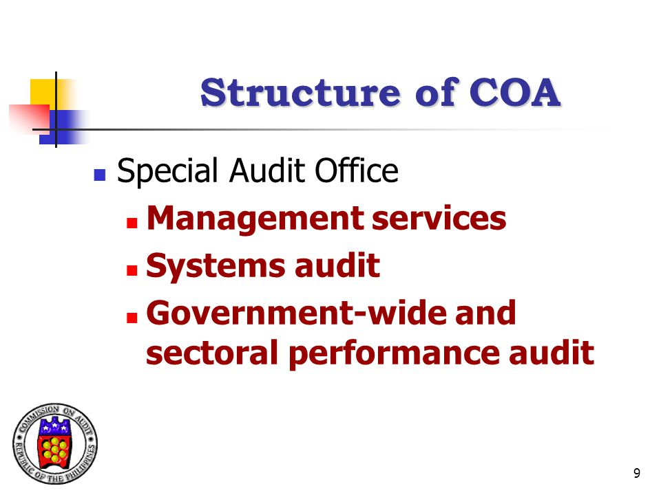 Structure of COA Special Audit Office Management services
