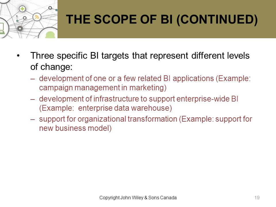 THE SCOPE OF BI (CONTINUED)