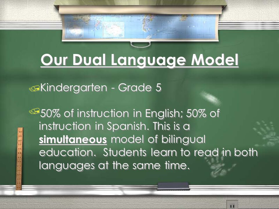 Our Dual Language Model