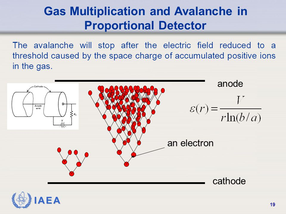 Gas Multiplication and Avalanche in Proportional Detector