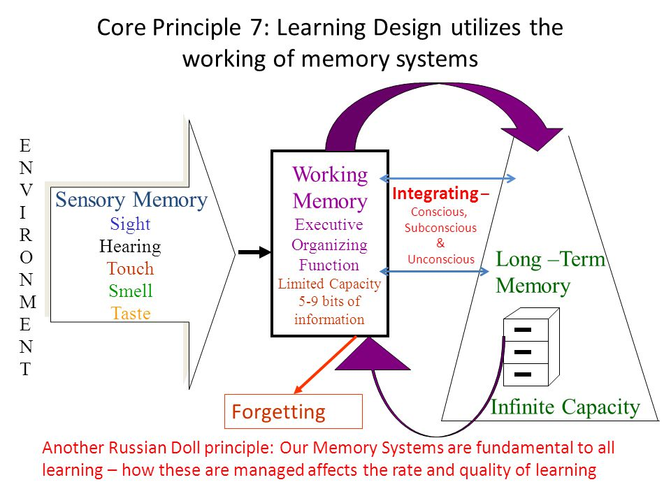 Core Principle 7: Learning Design utilizes the working of memory systems