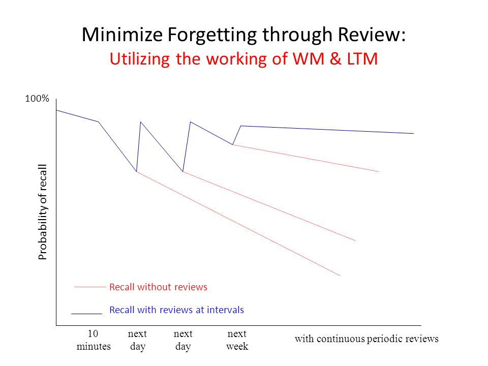 Minimize Forgetting through Review: Utilizing the working of WM & LTM