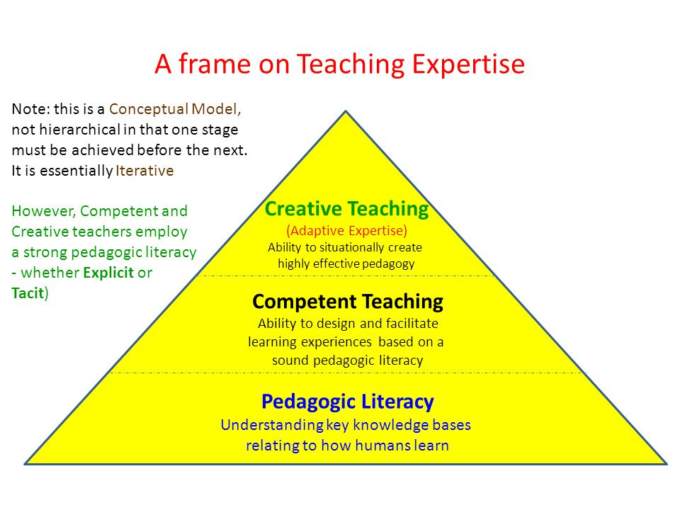 A frame on Teaching Expertise