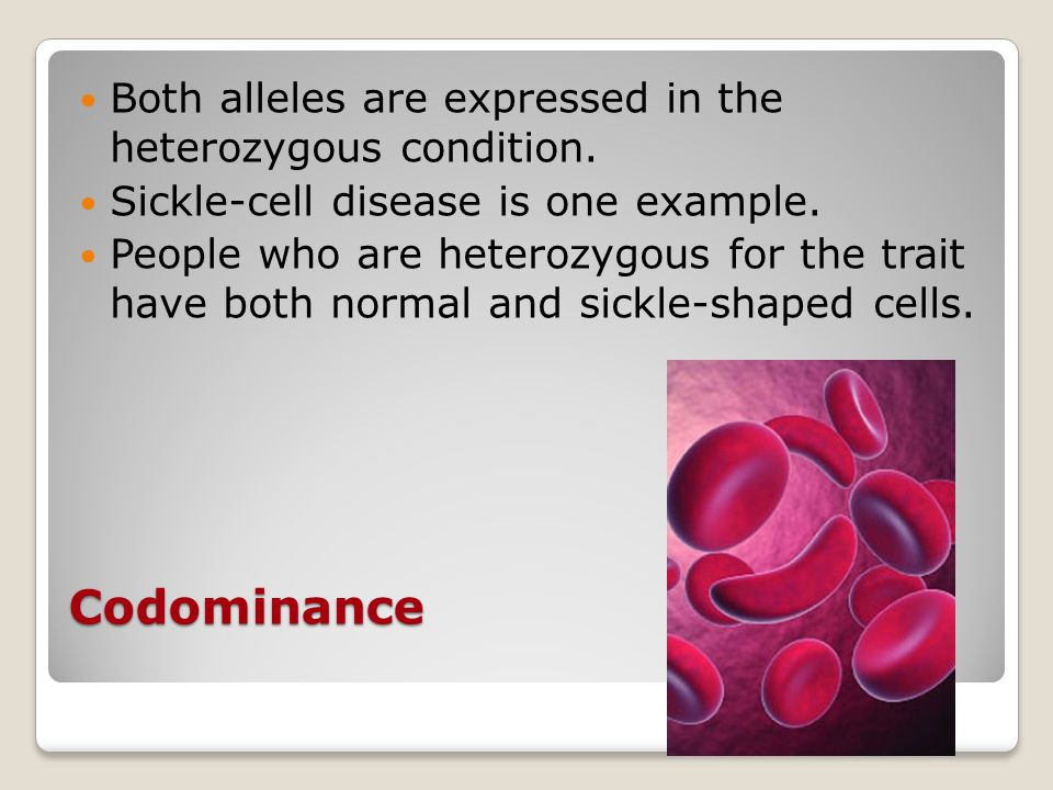 Codominance Both alleles are expressed in the heterozygous condition.