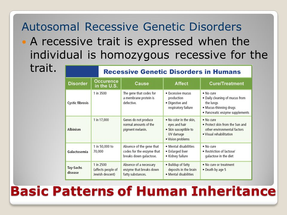 Basic Patterns of Human Inheritance