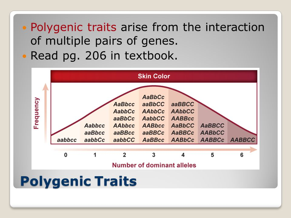 Polygenic traits arise from the interaction of multiple pairs of genes.