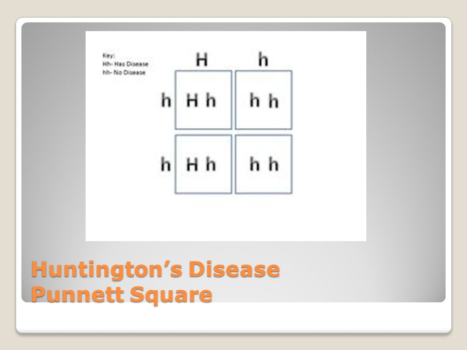 Huntington's Disease Punnett Square