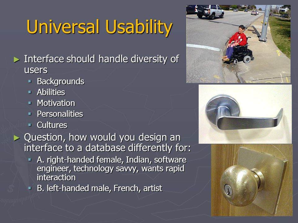 Universal Usability Interface should handle diversity of users