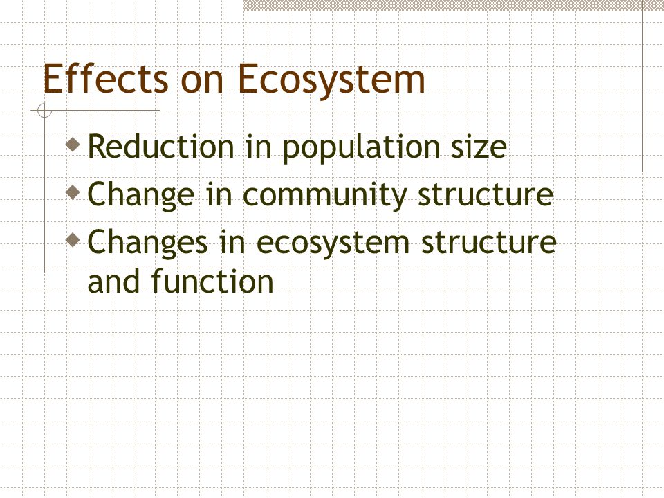 Effects on Ecosystem Reduction in population size