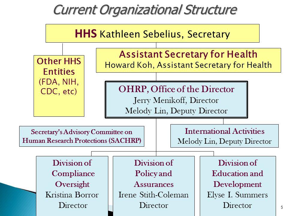 Current Organizational Structure
