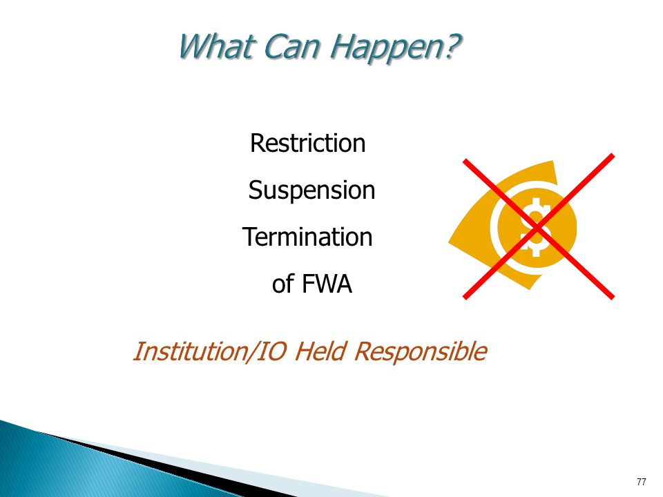 What Can Happen Restriction Suspension Termination of FWA Institution/IO Held Responsible