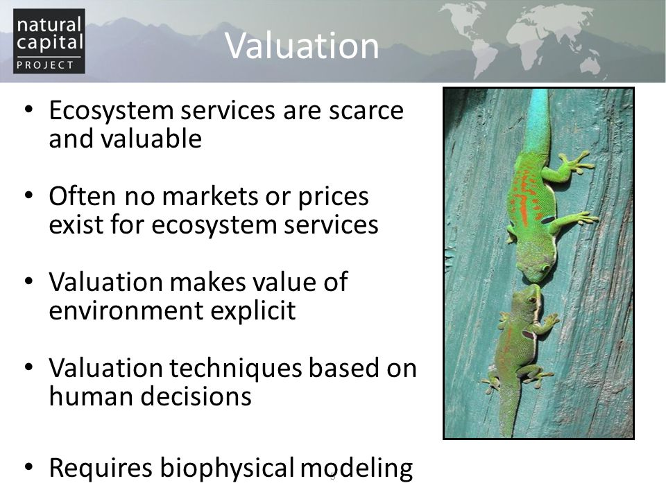 Valuation Ecosystem services are scarce and valuable
