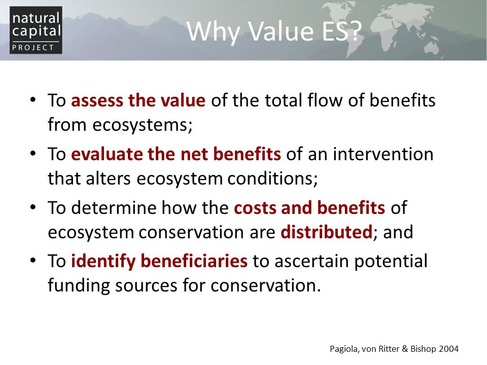Why Value ES To assess the value of the total flow of benefits from ecosystems;