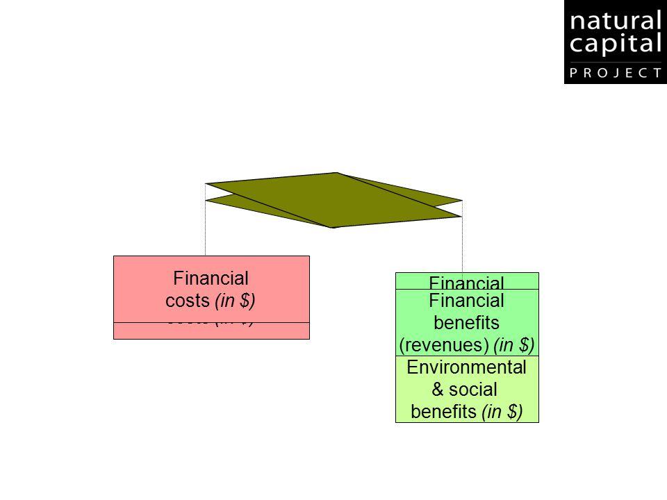 Financial costs (in $) Environmental. & social. benefits (in $) benefits. (revenues) (in $) Environmental.