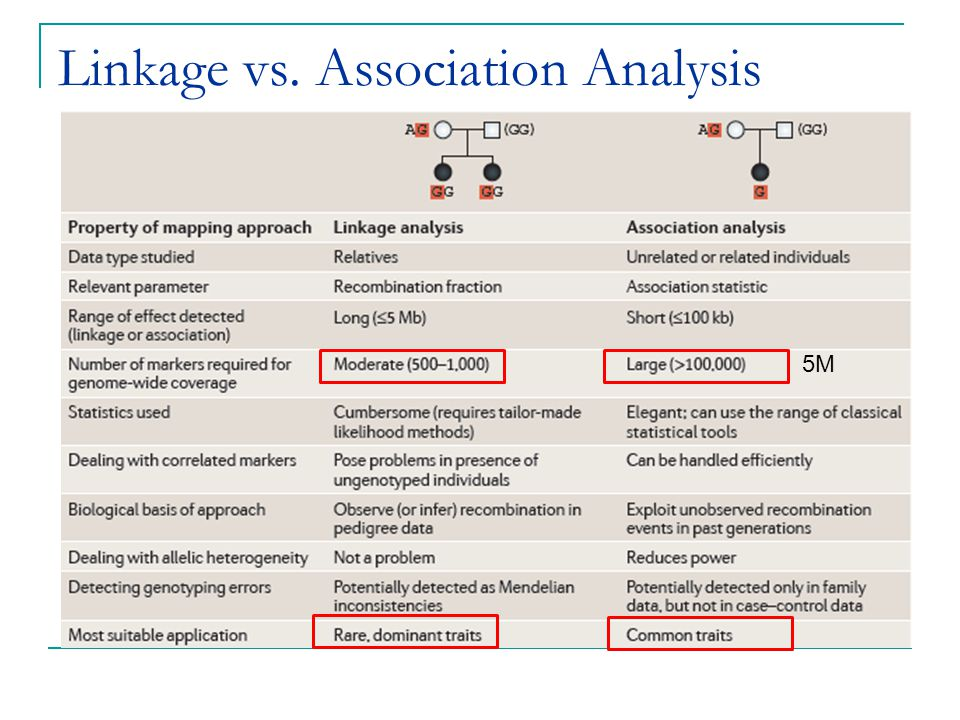 Linkage vs. Association Analysis