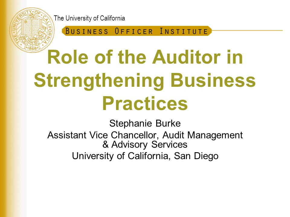 The role of audit