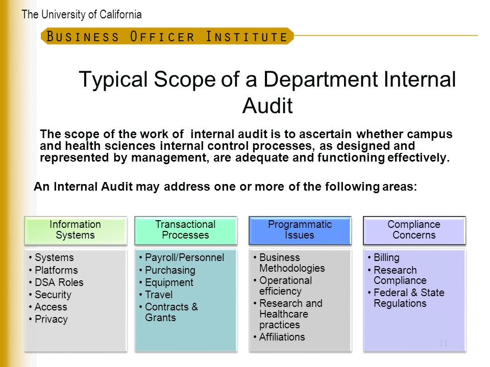 Typical Scope of a Department Internal Audit