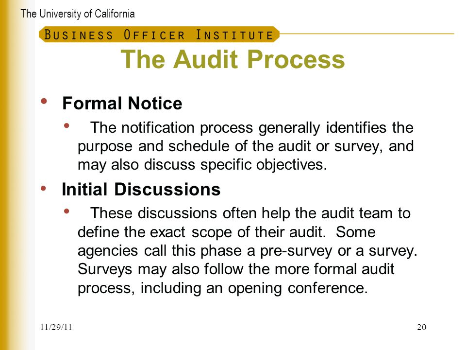 The Audit Process Formal Notice
