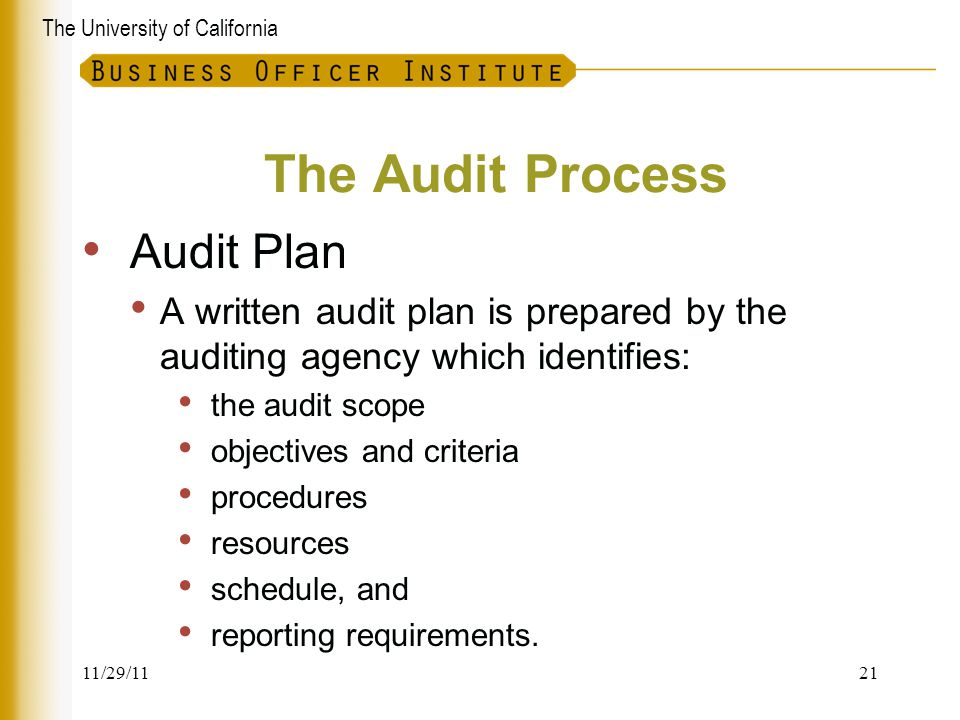 The Audit Process Audit Plan
