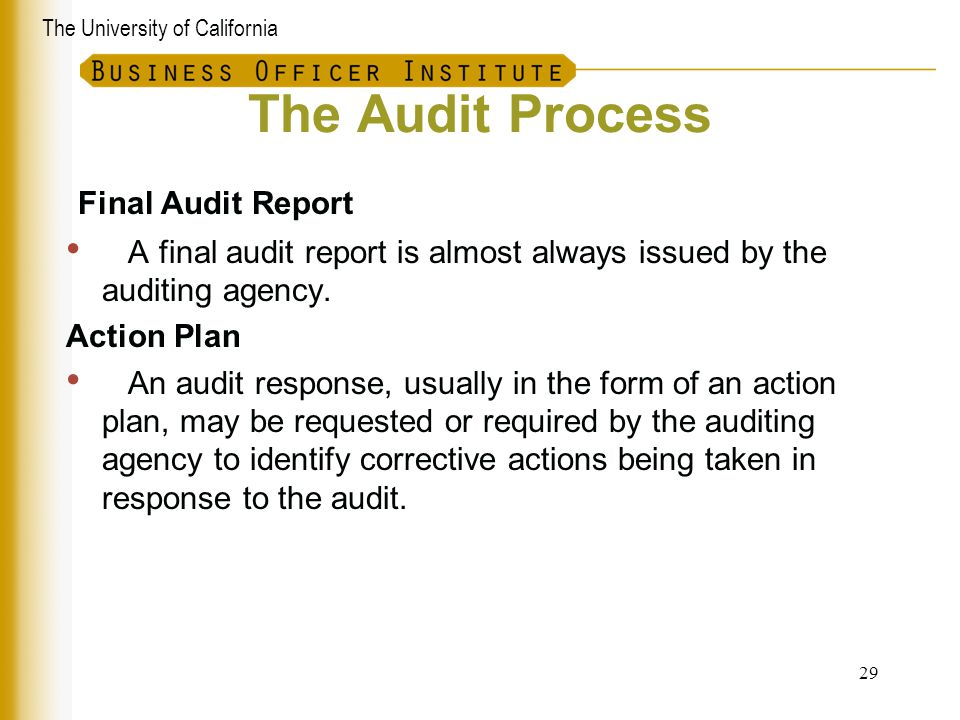 The Audit Process Final Audit Report