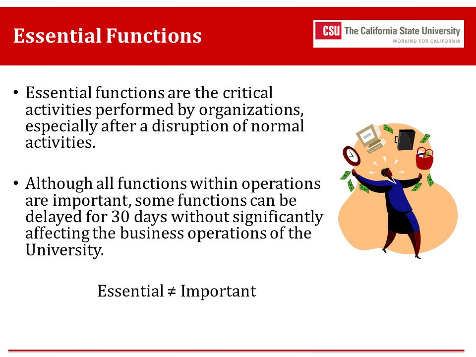 Essential Functions Essential functions are the critical activities performed by organizations, especially after a disruption of normal activities.