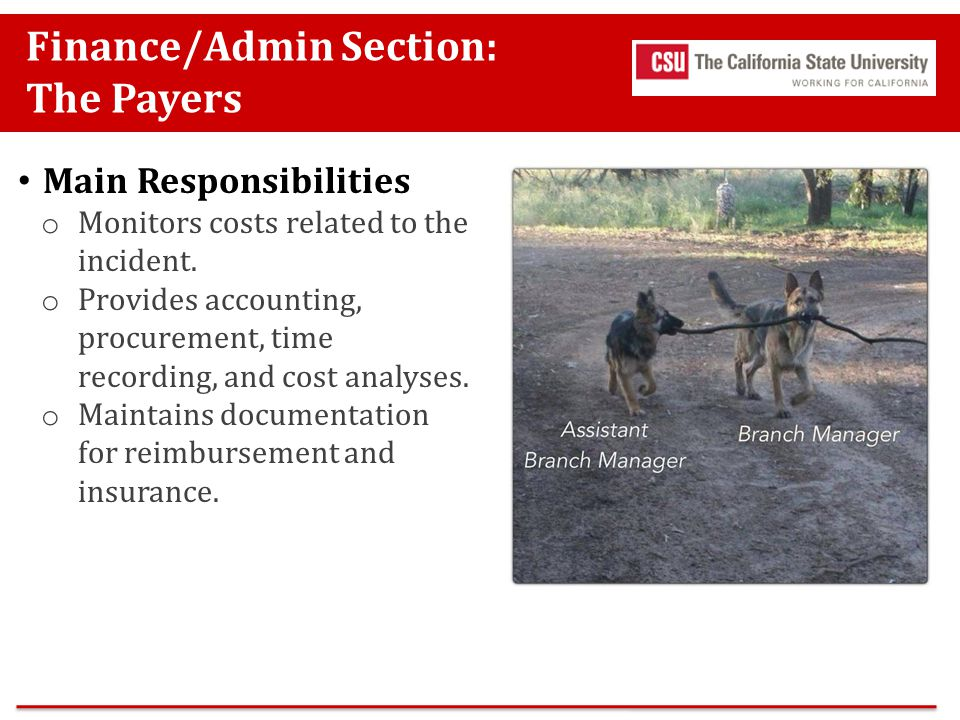 Finance/Admin Section: The Payers