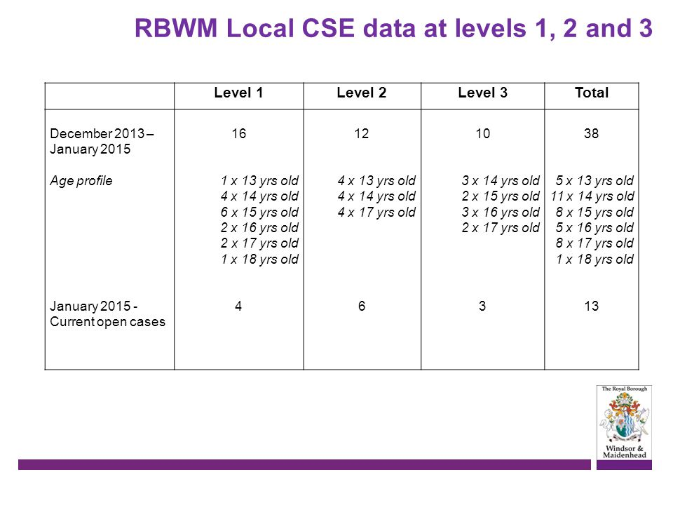 RBWM Local CSE data at levels 1, 2 and 3