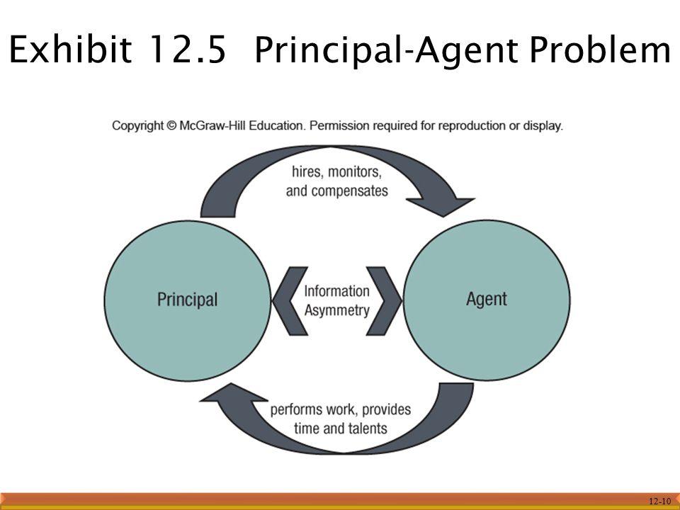 Exhibit 12.5 Principal-Agent Problem