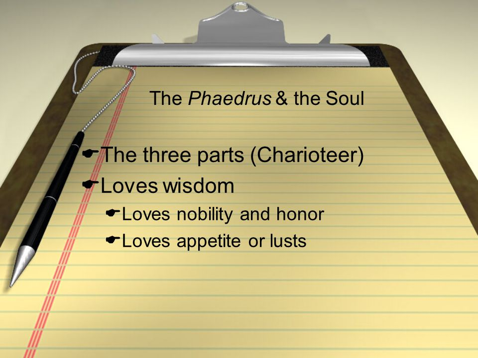 The three parts (Charioteer) Loves wisdom