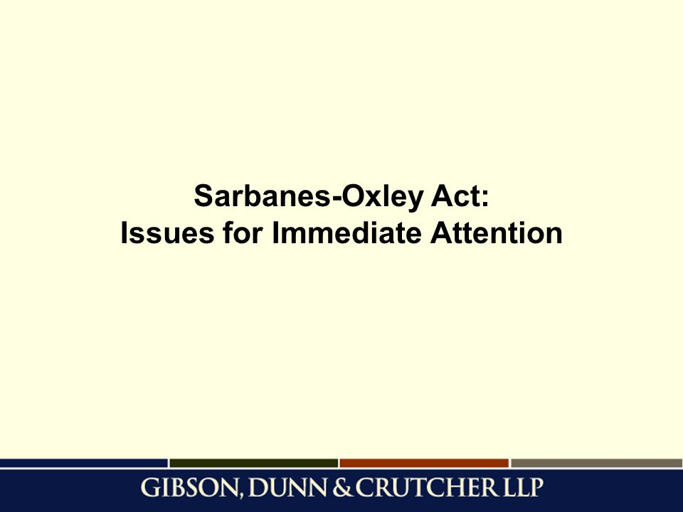 Sarbanes-Oxley Act: Issues for Immediate Attention