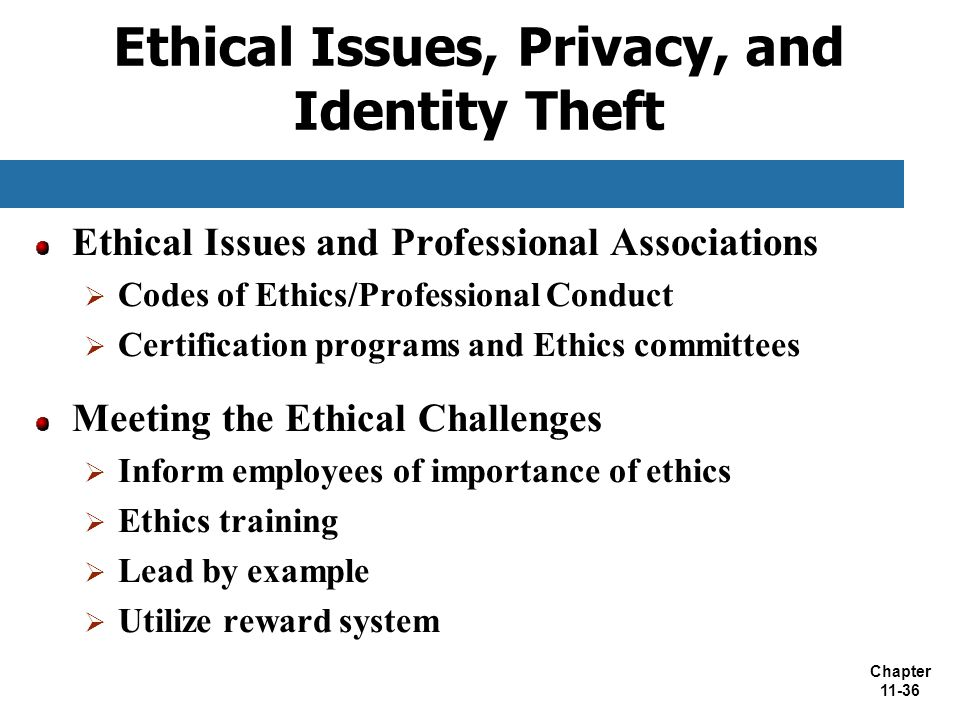 Ethical Issues, Privacy, and Identity Theft