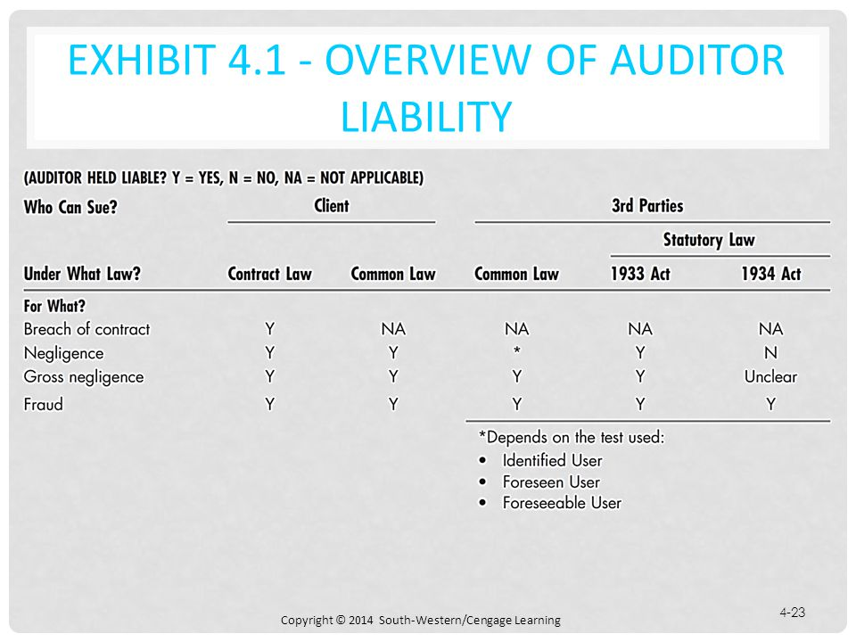 Exhibit 4.1 - Overview of Auditor Liability