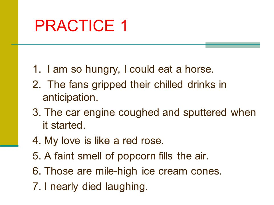 PRACTICE 1 1. I am so hungry, I could eat a horse.